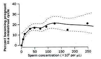 Abstaining and sperm count